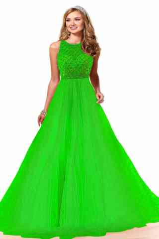 Divine Green Colored Evening Soft Net Gown