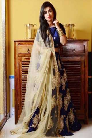 Traditional Blue Paper Heavy Silk Box Pattern Embroidered Lehenga Choli - LC134